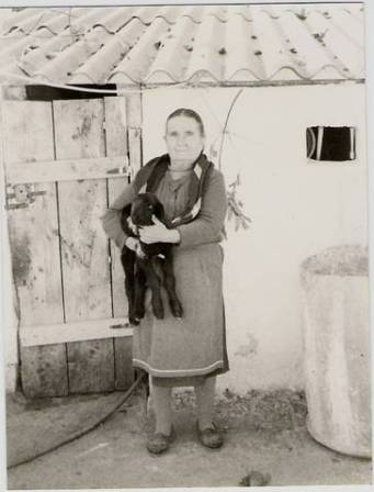 Old photo of my grandmother Maria looking very stern - whilst holding a sheep!