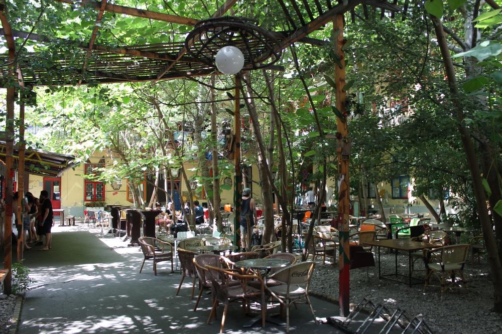 Grandio's beautiful garden.
